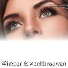 WIMPERS & WENKBRAUW VERF